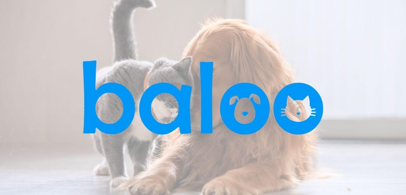 Clínica Veterinaria Baloo